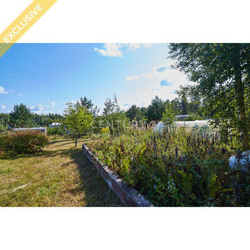 Продажа земельного участка 14,2 соток в СНТ Эко, д. Половина - Фото 5