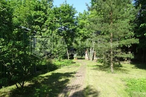 Лесной участок 10 сот. - Фото 1