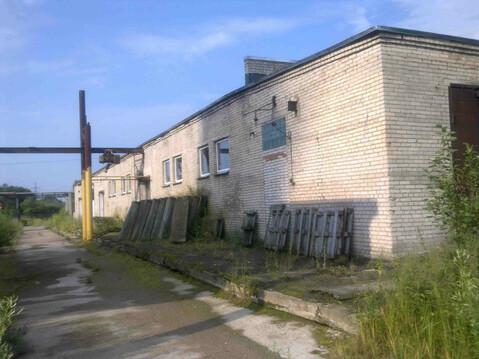 Сдам производственно-складское помещение в аренду в ло от собственника - Фото 2