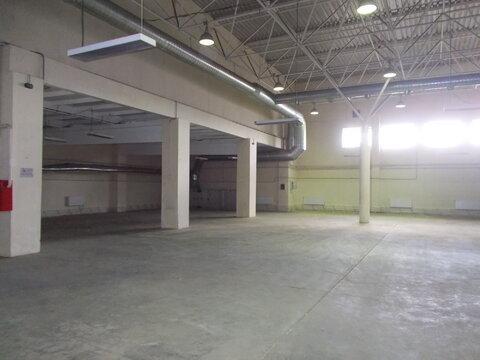 Помещение 590 кв.м, под склад, производство, торговлю - Фото 1