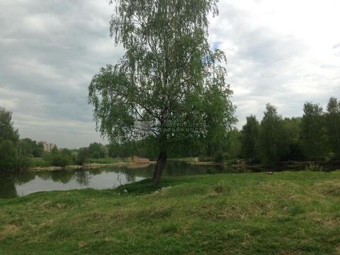 Участок 15 сот. , Ярославское ш, 20 км. от МКАД. - Фото 3