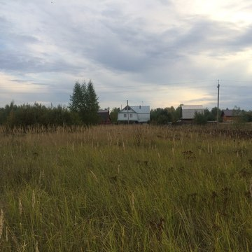 Участок 10 соток Тетеево - Фото 2
