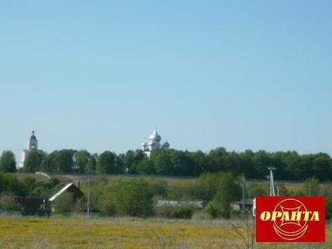 Участок в д. Зарелье. 6 км от Великого Новгорода. - Фото 2
