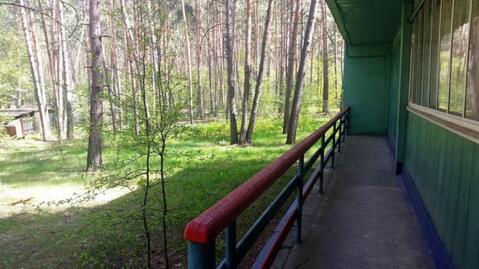 Продажа псн, Новая Таволжанка, Шебекинский район - Фото 3