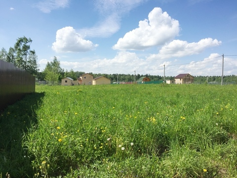 8 соток в жилой деревне Беклемишево 45 км от МКАД по Дмитровскому ш. - Фото 1