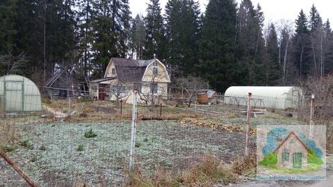 Продается крайний к красивому лесу садовый зимний дом - Фото 3