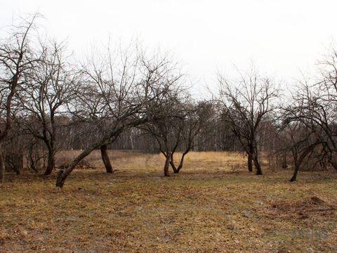 Земельныйучасток28 соток для строительства загородного . - Фото 3