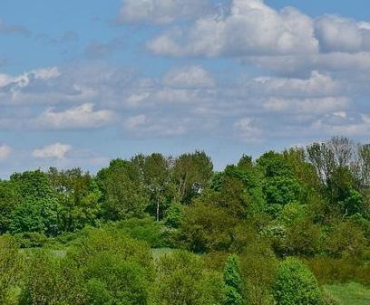 Продажа дома, Казань, Садовое неком-е товарищество СНТ Овощник-3 - Фото 1