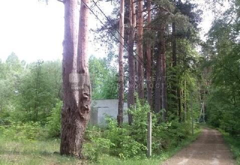 Участок 12 сот. , Минское ш, 34 км. от МКАД. - Фото 5