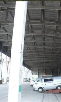 Продам производственное помещение 9000 кв.м, м. Пионерская - Фото 2