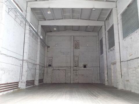 Сдам складское помещение 470 кв.м, м. Бухарестская - Фото 4
