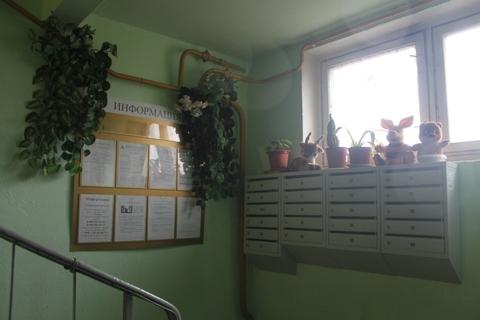 1-комн. квартира пос. Октябрьский Люберецкого района, ул. Ленина д.39 - Фото 3