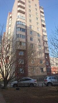 Квартира на Савушкина,113 - Фото 3