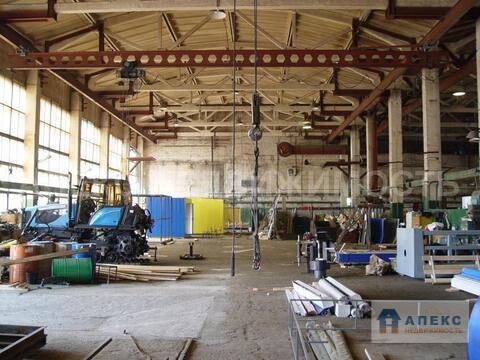Продажа помещения пл. 14500 м2 под склад, производство, , , Михнево . - Фото 1