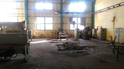Сдам производственное помещение 1000 кв.м, м. Электросила - Фото 4