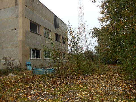 Помещение свободного назначения в Московская область, Волоколамский . - Фото 2