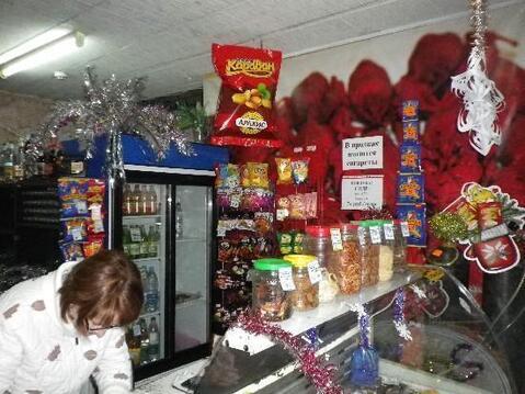 Продажа торгового помещения, Тольятти, Ул. Карбышева - Фото 3