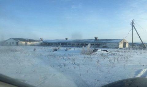 Аренда псн, Ленино, Касимовский район, Колхозная - Фото 5