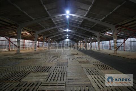Аренда помещения пл. 3000 м2 под склад, склад ответственного хранения, . - Фото 4
