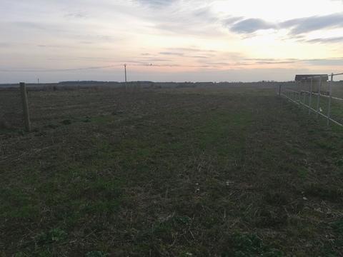 Продажа земельного участка в д. Кашино - Фото 1