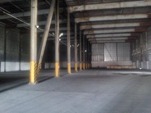 Холодный склад с крытыми рампами площадью 5266 кв.м. в Новороссийске. - Фото 1