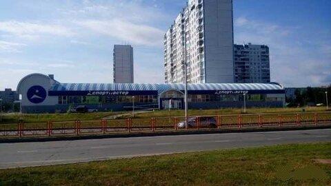 Продажа торгового помещения, Нижневартовск, Ул. Чапаева - Фото 3