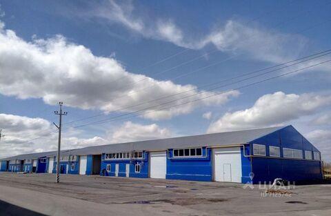 Продажа производственного помещения, Бабяково, Новоусманский район, . - Фото 1