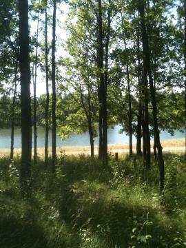Продается земельный участок в 14 км. от г.Чебоксары - Фото 4