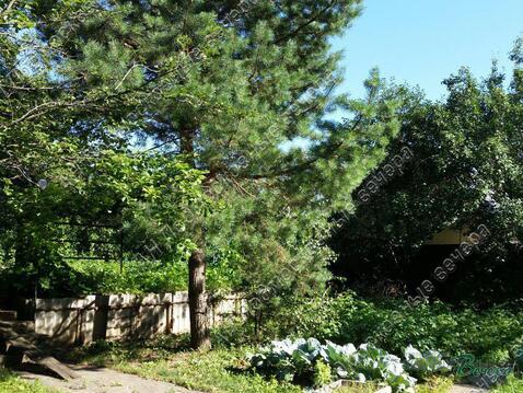 Дмитровское ш. 37 км от МКАД, Деденево, Коттедж 331.3 кв. м - Фото 5