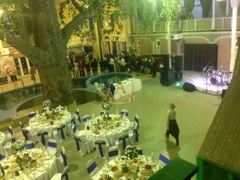 Снять коттедж-комплекс для свадьбы, праздников - Фото 4