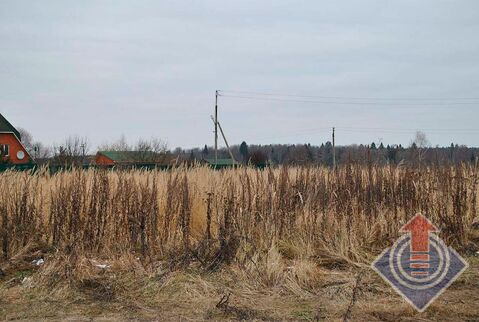 Продажа земельного участка 12 соток в д. Петровское - Фото 5