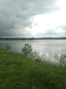 Купить озеро в Тульской области - Фото 3