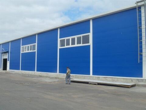 Сдам складское помещение 2000 кв.м, м. Бухарестская - Фото 3
