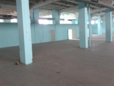 Сдам складское помещение 1850 кв.м, м. Ломоносовская - Фото 1
