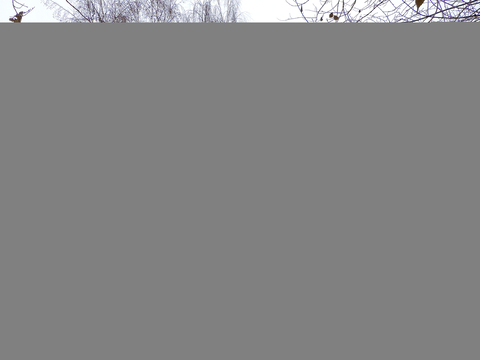 Продам 2-к квартиру, Москва г, Строгинский бульвар 14к3 - Фото 2