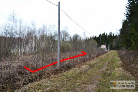 Участок 10 соток (электричка до Москвы в доступности) - Фото 3