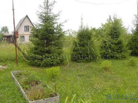 Продажа участка, Ивангород, Кингисеппский район, 1 линия - Фото 2