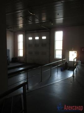 Сдам помещение универсальное. Приозерск г, Выборгская ул. - Фото 3