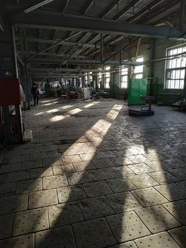 Производственно-складской комплекс 500 кв.м - Фото 3