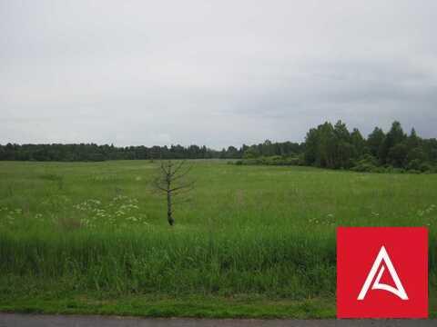Земельный участок 300 га сельхознзначения, Торжокский р-н, Тверская об - Фото 2