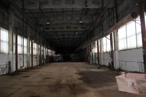 Сдам производственно-складское помещение 800 м2 H-9 м - Фото 4