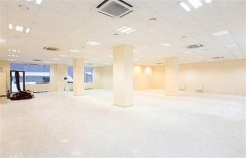 Сдам офисное помещение 278 кв.м, м. Василеостровская - Фото 2