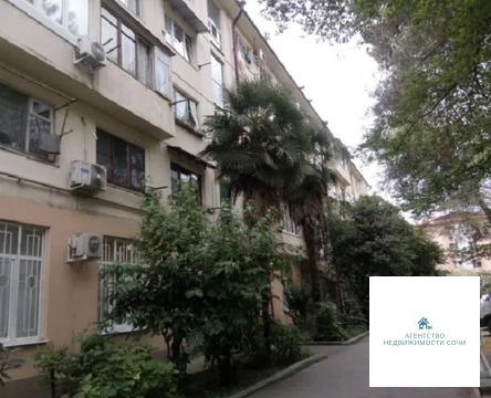 Краснодарский край, Сочи, ул. Донская,54