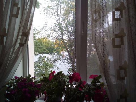 Нижний Новгород, Нижний Новгород, Минина ул, д.1, 3-комнатная . - Фото 4