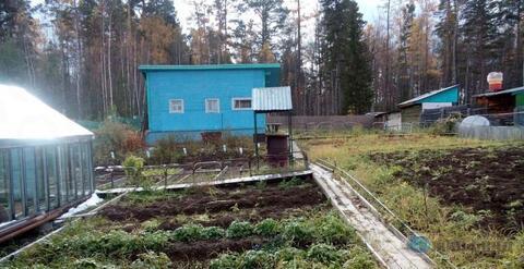 Продажа дачи, Усть-Илимск, СНТ Гидростроитель - Фото 2