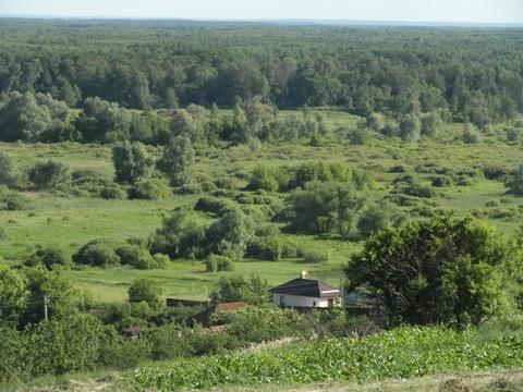 Продам дом с участком с.коршево - Фото 2