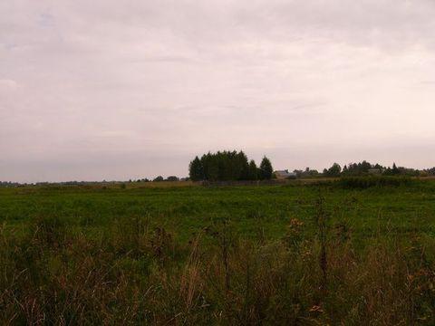 Участок 9 соток в д.Уткино, Клепиковского района. - Фото 3