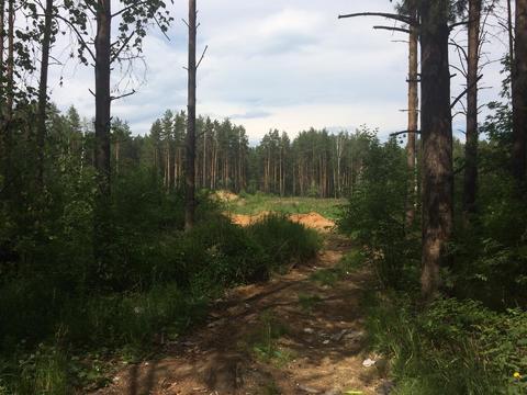 Продается земельный участок 2,13 Га в Екатеринбурге - Фото 5