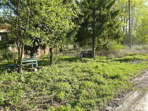 Страхово село животноводческий комплекс на участке 8 гектар - Фото 5