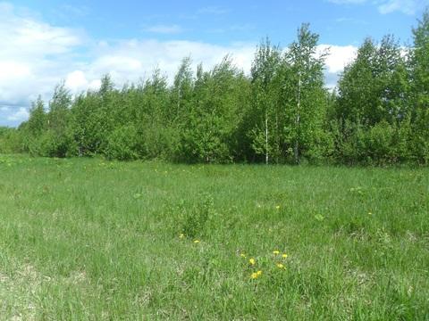 Земельный участок 30 сот (знп;лпх) в п. Буденовец от МКАД 68 км - Фото 3